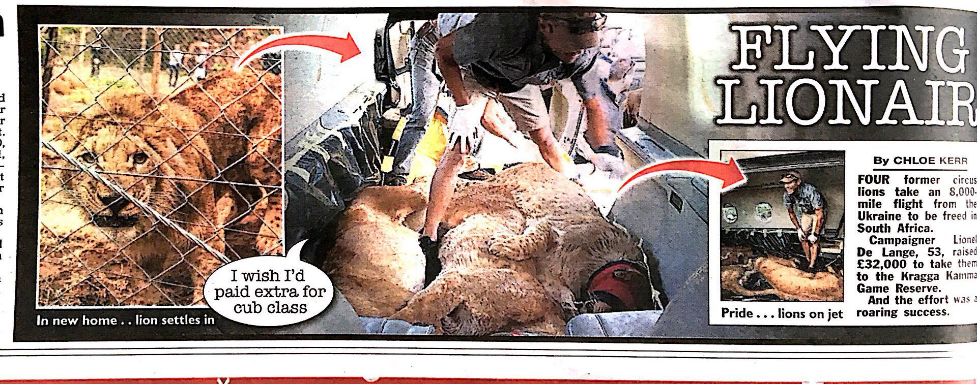 The Sun – Flying Lion-Air with this amazing lion rescue from Ukraine to South Africa